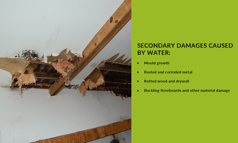 secondary damages caused by water?