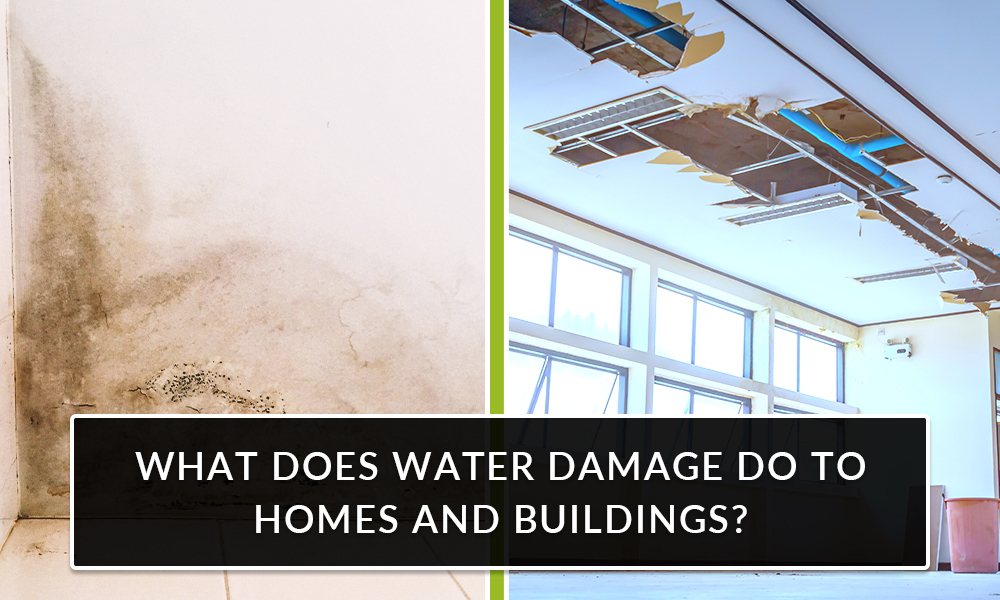 What Does Water Damage Do to Homes and Buildings?